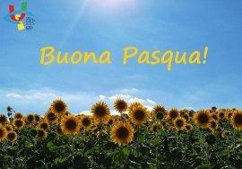 Un prato di girasoli, sullo sfondo un cielo sereno e un raggio di sole che illumina la campagna