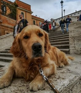 Il nostro bellissimo Italo sulla scalinata di Piazza di Spagna, a Roma
